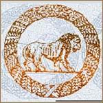 Urbino Cione