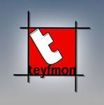TEYFMON